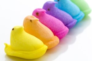 Peeps marshmallow chicks